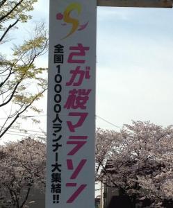 佐賀桜マラソン2015年