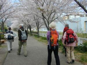 箱根でハイキング!桜が綺麗