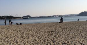 横浜海の公園で潮干狩り