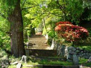 埼玉で日帰りハイキングをする際の注意点