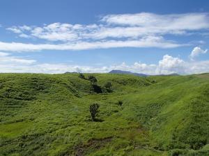 国立公園と国定公園の違い